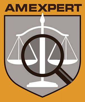 Logo AMEXPERT